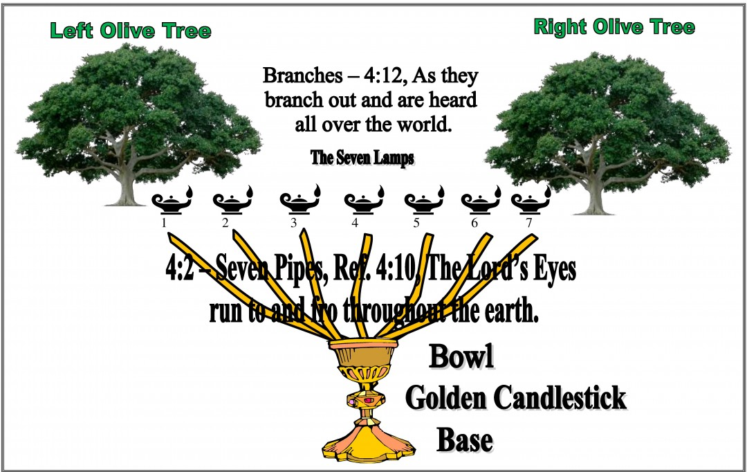 Image result for trees mentioned in the bible images