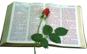 An image of a Bible and a rose to illustrate the poem,  Mother's Legacy, written by Marjorioes