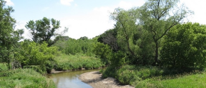 https://heritagebbc.com aka http://dryounce.com - A Picture of the real Plum Creek, located in Walnut Grove, Minnesota, one of the childhood homes of noted author, Laura Ingalls Wilder.
